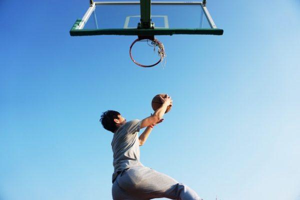 Wie Stamhoofd Ihren Sportverein einfach digitalisiert
